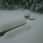 My parents' backyard in Cleveland. Man, wish I was home right now. Snowdays forever!